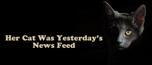 Her-Cat-was-Yesterday's-newsfeed